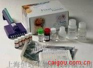 小鼠肿瘤标志物ELISA试剂盒