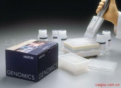 大鼠血管舒缓激肽ELISA试剂盒