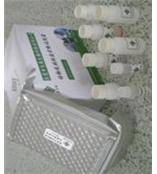 小鼠核因子κB受体活化因子配基试剂盒北京,北京小鼠RANKL ELISA试剂盒