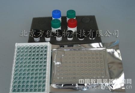 人抗呼吸道合胞病毒抗体 ELISA价格,人RSV ELISA Kit检测代测