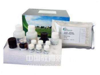 新品供应 人5,10亚甲基四氢叶酸还原酶(MTHFR)ELISA Kit 价格