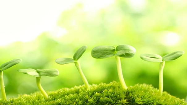 《植物生长与环境》课程资源包