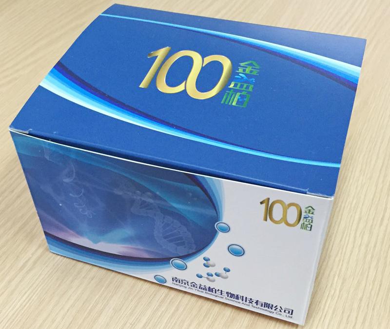 猪诱导型一氧化氮合成酶(iNOS)ELISA试剂盒[猪诱导型一氧化氮合成酶ELISA试剂盒,猪iNOS ELISA试剂盒]
