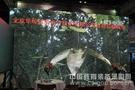 北京华埠信维亮相北京教育装备展示会