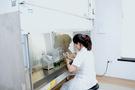 HPLC-ICP-MS和HPLC-AFS助力食品安全检测