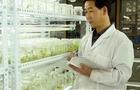 努力做好示范——访甘肃农业大学植物生产类实验教学中心主任张金文