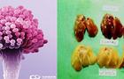 玉米赤霉烯酮对猪禽的危害玉米赤霉烯酮快速检测仪