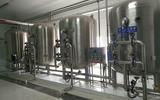 上海濱潤環保供應2T每小時醫藥用純化水設備