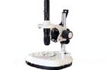 单目体视显微镜