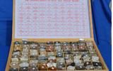 25种宝玉石矿物标本 wi114611