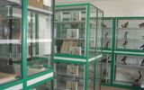 實驗室-標本室