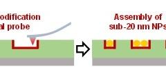 南大张伟华&鲁振达团队丨热扫描探针刻写助力单量子点确定性组装