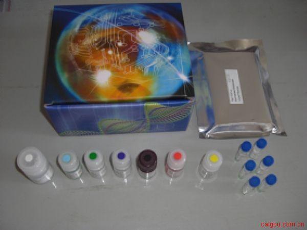 大鼠MMP-10检测Elisa试剂盒