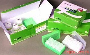 兔子补体片断3aElisa试剂盒,C3a试剂盒