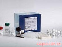 鸡IFN-α,α干扰素Elisa试剂盒