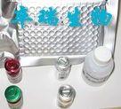 小鼠转铁蛋白受体(TFR/CD71)Elisa试剂盒