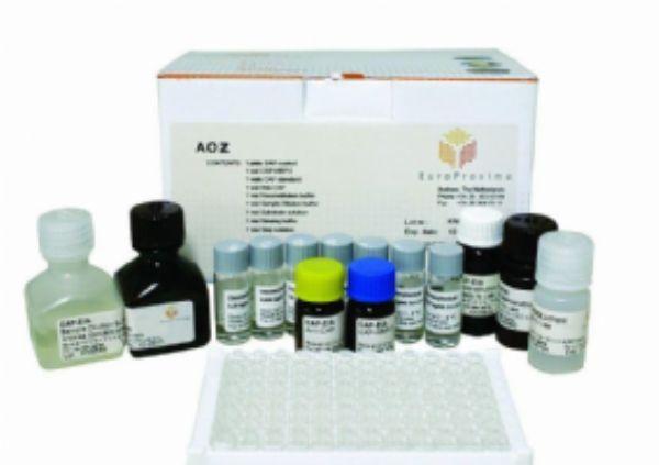 猪Ⅰ型前胶原羧基端肽(PⅠCP)ELISA试剂盒