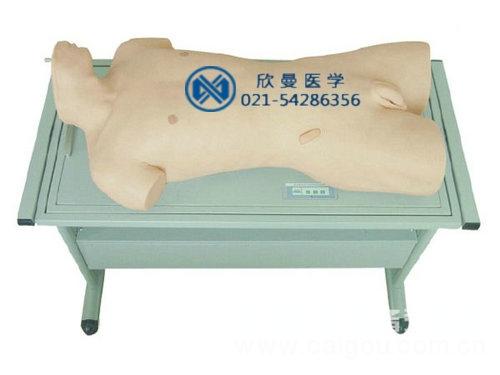綜合穿刺術與叩診檢查訓練模型