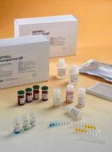 代测犬内皮素1(ET-1)ELISA试剂盒价格