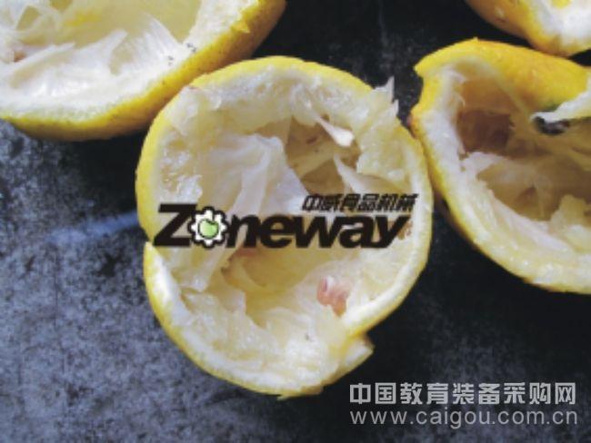 QBZJ-6型橙子去皮榨汁机