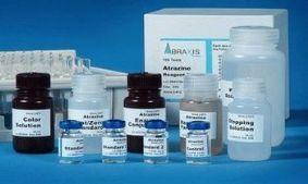 大鼠CC16 ELISA/大鼠克拉拉细胞蛋白试剂盒