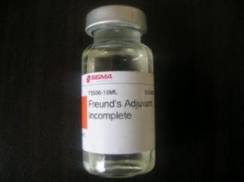 5-溴脱氧胞嘧啶核苷
