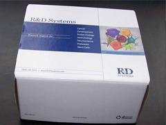 游离三碘甲状腺原氨酸(Free-T3)ELISA试剂盒