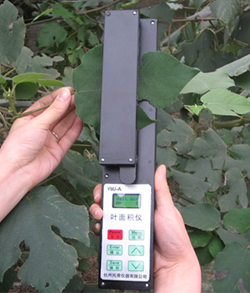 面积测量仪/手持式面积测量仪