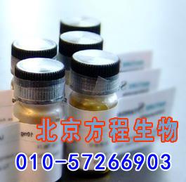 人尼克酰胺腺嘌呤二核苷酸磷酸氧化酶4(NOX4)检测/(ELISA)kit试剂盒/免费检测