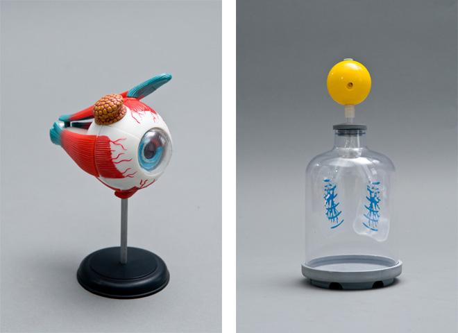 莱博士科学实验箱-人体实验箱