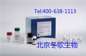 Human抗子宫内膜抗体,人(EMAb)elisa试剂盒