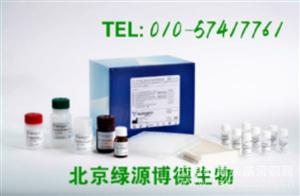 人不耐热肠毒素B亚单位 Elisa kit价格,LTB进口试剂盒说明书