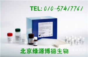 人雌二醇 Elisa kit价格,E2进口试剂盒说明书