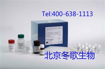 Human冷球蛋白,人(CG)elisa试剂盒